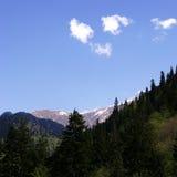 Georgia berg i sommartid Royaltyfri Fotografi