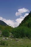 Georgia berg i sommartid Royaltyfria Foton