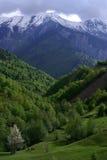 Georgia berg i sommartid Arkivfoton