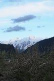 Georgia berg i sommartid Arkivbild