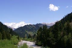Georgia berg och flod Arkivfoton