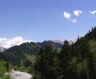 Georgia berg och flod i sommartid Royaltyfri Bild