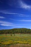 Georgia Countryside Stock Image
