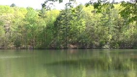 Georgia Fort Mountain Lake with trees and reflection Pan left to right. Fort Mountain Lake with trees and reflection, and a Pan left to right stock video footage