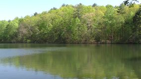 Georgia Fort Mountain Lake with trees and reflection, Zoom Out. Fort Mountain Lake with trees and reflection with a Zoom Out stock footage