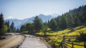 Georgia,Gruzia,near Mestia,road to Ushguli and mountain Shkhara ahead. Georgia,Gruzia,Svaneti region ,road to Ushguli,morning sun,forest on the right,mountain royalty free stock photo