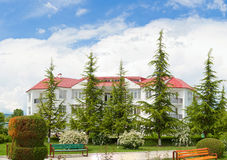 georgia natura wakacyjna domowa Zdjęcie Stock