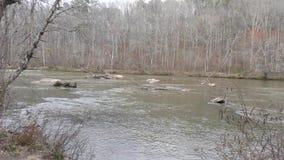 Georgia, parque de la cala de Sweetwater, rocas y miembros en el medio de la cala de Sweetwater almacen de video