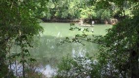 Georgia, parque del puente de Abbotts, barco de A con dos hombres que pescan los flotadores cerca en el río Chattahoochee metrajes