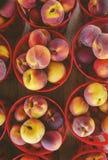 Georgia peaches on a summer day royalty free stock photos