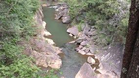 Georgia, Tallulah Falls, breite Ansicht A von Tallulah Creek, während es in Richtung zum Hurrikan fließt, fällt stock video