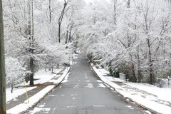Georgia Tree`s Covered in Snow. Trees covered in snow near Atlanta, Georgia during the 2017 winter Royalty Free Stock Images