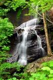 Georgia-Wasserfall Lizenzfreies Stockfoto