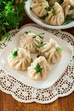 Georgian dumplings - Khinkali Chinkali with minced meat and he royalty free stock photos