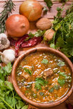 Georgian kharcho. Kharcho.Georgian beef-walnut soup with rice Royalty Free Stock Photo