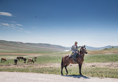 Georgian man with his horse in Caucasus mountains. Tbilisi, Georgia - circa July 2016: cows on the field being led by a horseman Royalty Free Stock Photos