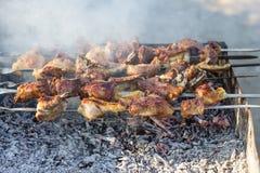 Georgian Traditional Food Mtsvadi Stock Image