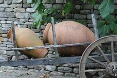 Georgisk lerakanna för vin royaltyfri fotografi