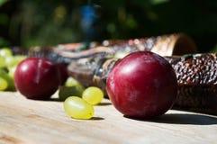 Georgisk lerkärl för vin och frukter Arkivfoto
