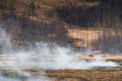 Geotermiczna łąka w Iceland Zdjęcia Royalty Free