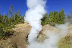 Geotermiczna aktywność przy Yellowstone parkiem narodowym, Wyoming Zdjęcie Stock