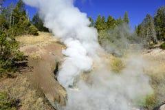Geotermiczna aktywność przy Yellowstone parkiem narodowym, Wyoming Obraz Royalty Free