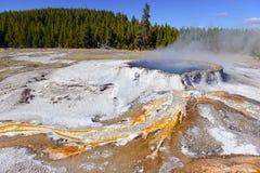 Geotermiczna aktywność przy Yellowstone parkiem narodowym, Wyoming Zdjęcia Stock
