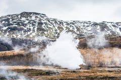 Geotermiczna natura z parnymi polami Obraz Stock