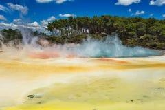 Geotermiczny jezioro Nazwany Szampan Gromadzący przy Wai-O-Tapu Geotermicznym terenem blisko Rotorua zdjęcie royalty free