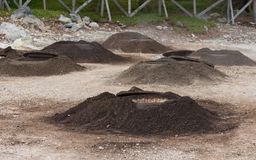 Geotermisk matlagninghålsao miguel azores Arkivfoton