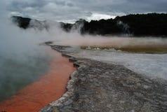 Geotermisk sjö i Rotorua Arkivbilder