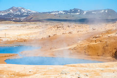 Geotermiska fröskidor av Namaskard, Island Royaltyfri Bild