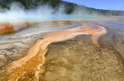Geothermal activity at Yellowstone National Park, Wyoming Royalty Free Stock Photos