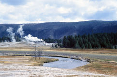 Geothermal Activity in Yellowstone Park. Steaming geothermal vents in Old Faithful Geyser Park erupting from bleak, crusted landscape. Pine trees in background Royalty Free Stock Photography