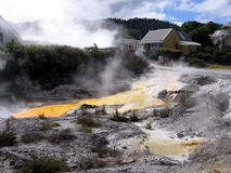 Geothermal Area. In Roturua in New Zealand Royalty Free Stock Photo