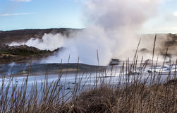Geothermal Area Stock Image