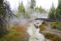 Geothermal Area, Yellowstone Stock Image