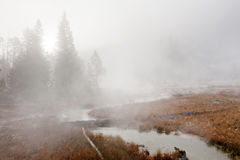 Geothermal Area Yellowstone Stock Image