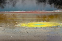 Geothermal colorful pool landscape - New Zealand Royalty Free Stock Photography