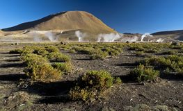 Geothermal field. Geothermal geyser field in high latidue plateau of Chili Royalty Free Stock Images