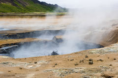 Geothermal field Namaskard, Iceland Stock Image