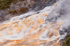 Geothermal geyser spring Orakei Korako New Zealand Royalty Free Stock Image