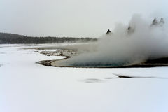 Geothermal geyser Yellowstone Wyoming Stock Photography