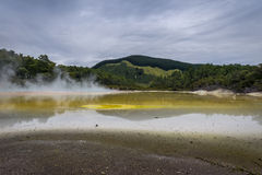 Geothermal Lake Waiotapu New Zealand Royalty Free Stock Photo