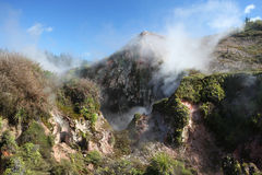 Geothermal Landscape, New Zealand Stock Photography