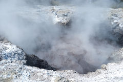 Geothermal Landscape - Rotorua, New Zealand Stock Photo