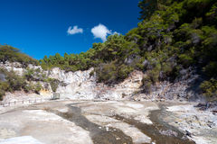 Geothermal Landscape - Rotorua, New Zealand Royalty Free Stock Image