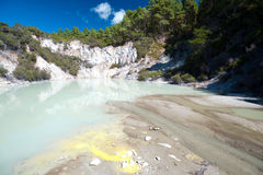Geothermal Landscape - Rotorua, New Zealand Stock Image