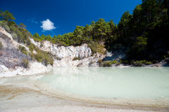Geothermal Landscape - Rotorua, New Zealand Royalty Free Stock Photo