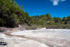 Geothermal Landscape - Rotorua, New Zealand Stock Photography